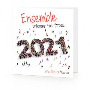 résolutions poux experts 2021